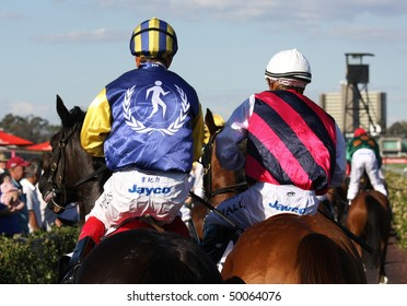 MELBOURNE - MARCH 13: Horses return to scale after the Australian Cup, won by Zipping at Flemington on March 13, 2010 - Melbourne, Australia.