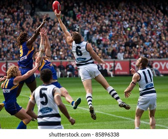 MELBOURNE - SEPTEMBER 24 : Brad Ottens (6) stretched for a ruck contest during Geelong's preliminary final win over West Coast on September 24, 2011 in Melbourne, Australia.