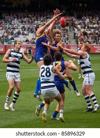 MELBOURNE - SEPTEMBER 24 : Dean Cox (top left) in a ruck contest during Geelong's preliminary final win over West Coast on September 24, 2011 in Melbourne, Australia.