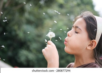 Melissa blows dandelion flower and pieces fly