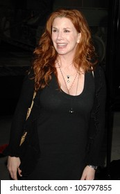 Melissa Gilbert  at the Los Angles Premiere of 'American Identity'. Samuel Goldwyn Theatre, Beverly Hills, CA. 03-25-09