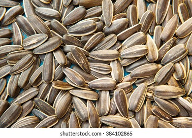 melon seed