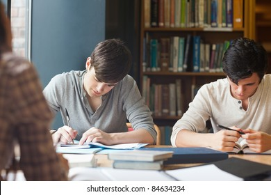Members of a study group working in a library