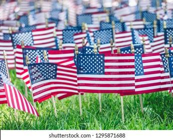 Memorial Day in American Park