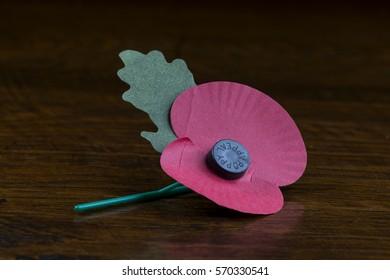 Memorial Poppy 2