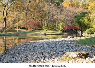 Memphis, TN / USA - Nov 7, 2018: Standing on a rock bed overlooking a lake and bridge in the Japanese Garden at Memphis Botanic Garden