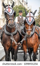 men coachman driving a carriage drawn by two horses on the street of the city of Prague, the Czech Republic in the summer