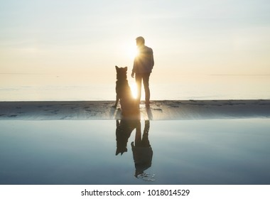 Men with dog friend on the beach. Concept and idea