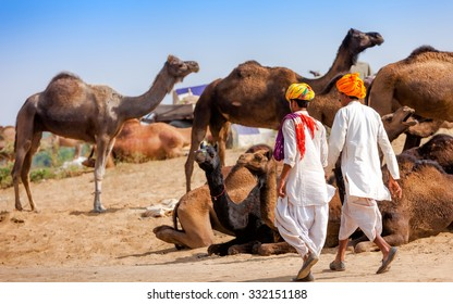 Men in ethnic attire attends the Pushkar fair in Rajasthan, India. Farmers and traders from all over Rajasthan flock for the annual fair.