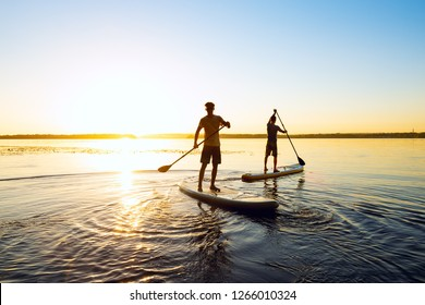 Men, friends are paddling on a SUP boards on a large river during sunrise. Stand up paddle boarding - awesome active recreation in nature. Backlight.