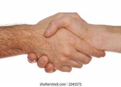 Men Handshake