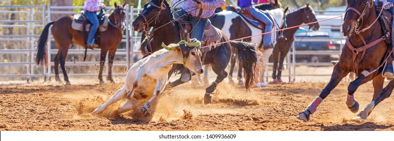 Men on horseback lassoing a running calf as a team in the popular calf roping sporting event at an Australian country rodeo