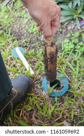 Men are replacing termite bait.Anti Termite Baiting System.