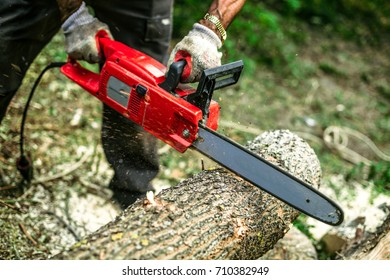 Men sawing wood using electrical red chainsaw.