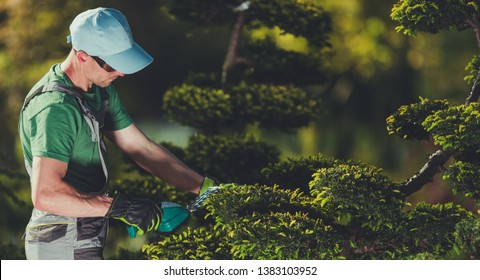 Men Shaping Garden Trees. Caucasian Gardener in His 30s with Small Electric Plants Trimmer. Topiary Theme.