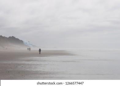 Men walkin away in Beach 2 area, Kalaloch, WA