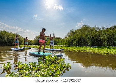 Men and women stand up paddleboarding on lake. Young couples are doing watersport on lake. Males and females tourists during summer vacation.