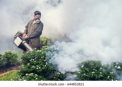 Men are working fogging to eliminate mosquito for preventing spread dengue fever