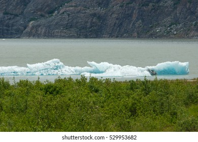 Mendenhall Glacier, Juneau, Alaska, USA