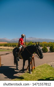 Mendoza, Argentina - July 2019: Man tourist riding horse on holiday. Boy on horseriding activity on vacation, admiring the beautiful brown horse.