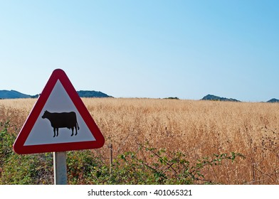 Menorca, Balearic Islands: warning sign for passage of the cows in the minorcan countryside on July 6, 2013