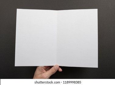 Mens hand holding empty white booklet on gray background. View from above