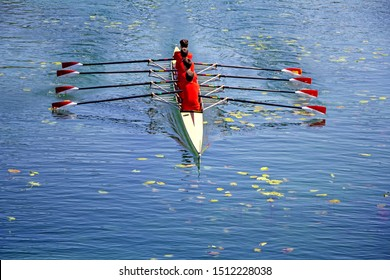 Men's quadruple rowing team on blue water, top view