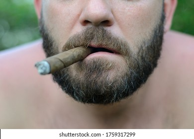 men's stylish beard with gray hair
