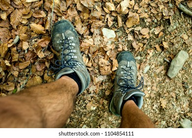 Mens trekking shoes while hiking in forest