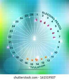 Menstrual cycle wheel. Average menstrual cycle. Bleeding period and ovulation.