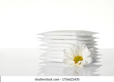 menstrual sanitary pads isolated on white background. Feminine hygiene products and chamomile flower.