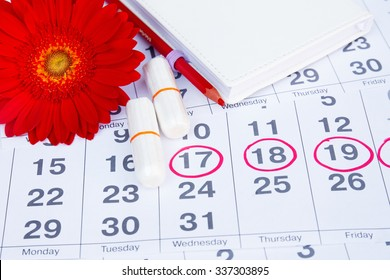 Menstruation calendar  with notebook, cotton tampons, red flower. Woman critical days, woman hygiene protection