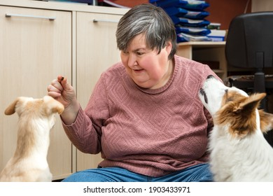 a mentally disabled or handicapped woman is giving some food to two dogs, mongrels or half breeds