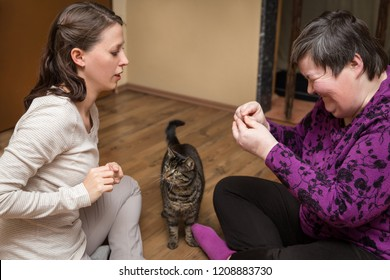 mentally disables woman and nurse with a cat, animal assisted therapy