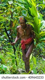 MENTAWAI PEOPLE, WEST SUMATRA, SIBERUT ISLAND, INDONESIA   16 NOVEMBER 2010: Man going Mentawai tribe in the jungle. 16 November, 2010. West Sumatra, Siberut island, Indonesia.