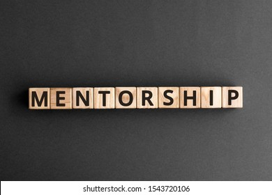Mentorship - word from wooden blocks with letters, mentoring mentorship concept,  top view on grey background