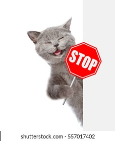 Stopping Cat Odors