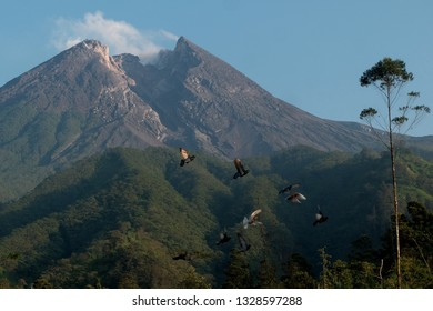 Merapi mountain indonesia