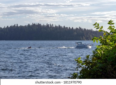MERCER ISLAND, WASHINGTON/USA - Sep 7, 2020: Motor sport on Lake Washington on a sunny summer day with lots of clouds in the sky.