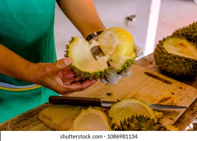Merchant peeling durian on the market.Durian is king of fruit and it very famous in Chinese Thai and south east asia. Even though it very smell and prohibit to bring in the car and air conditioner.