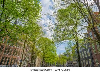 Merchants houses of the city of Amsterdam