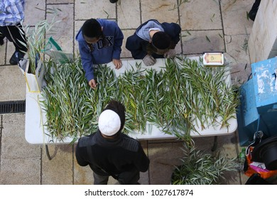 MERON, ISRAEL - OCT 11, 2017: Stands selling Aravot (hebrew for willow tree branches) on a table in Meron, Israel at the end of the holiday of Hoshana Rabba Jews smack the willow branches on the floor