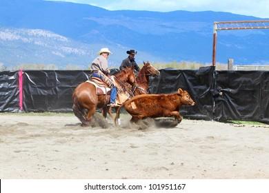 MERRITT, B.C. CANADA - MAY 5: Cowboy during the cutting horse event at The Merritt Cutting Horse Show May 5, 2012 in Merritt British Columbia, Canada