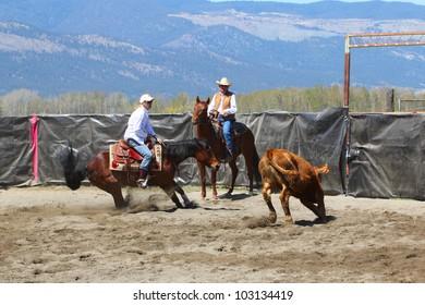 MERRITT, B.C. CANADA - MAY 5: unidentified Cowgirl during the cutting horse event at The Merritt Cutting Horse Show May 5, 2012 in Merritt British Columbia, Canada