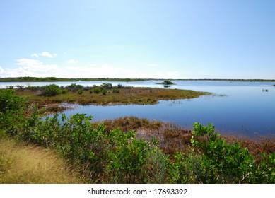 Merritt Island National Wildlife Reserve #1