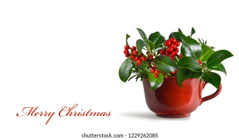 Merry Christmas card. Christmas arrangement with Christmas holly isolated on white background