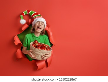 Merry Christmas! Little girl in Santa's elf costume on bright color background. Red and green.
