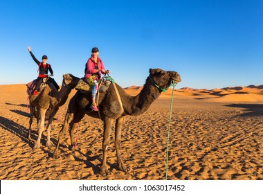 Merzouga Morocco 5.04.2018 - tourists are riding camels after the Sahara desert