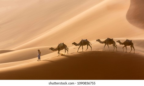 MERZOUGA, MOROCCO - APRIL 13, 2018: Camels are the main means of transport in the Sahara from ancient times to the present day