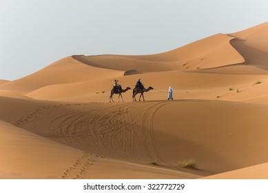 Merzouga, Morocco - Circa September 2015 - a camel train in the desert